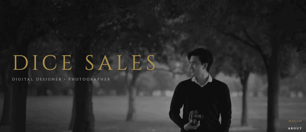 Dice Sales Single Page Website