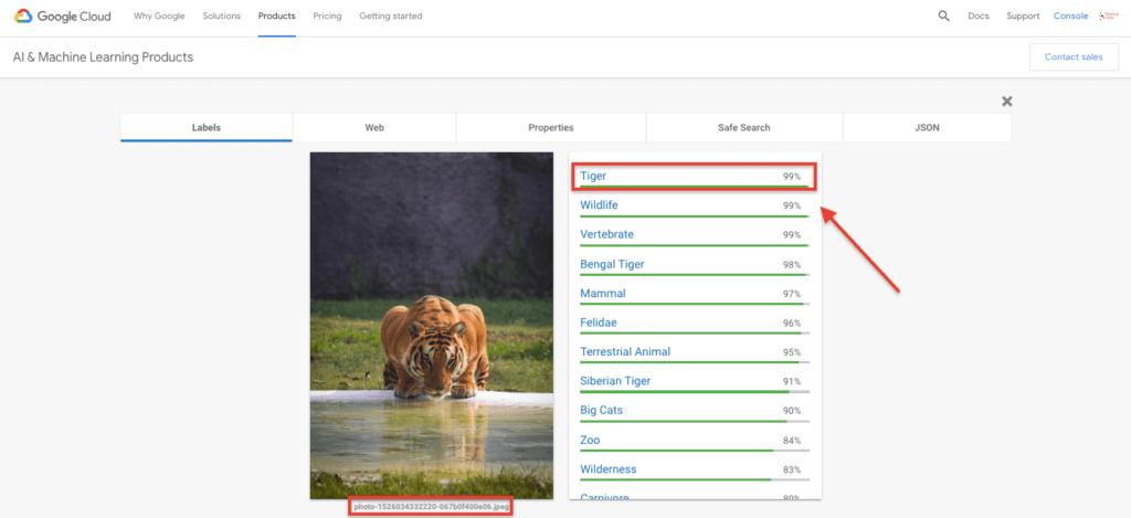 Cloud Vision API - Tiger